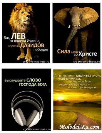 Подборка замечательных (java) книг в телефон (240*320) (320*240) христианских проповедников + БОНУС