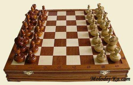 Скачать шахматы для компьютера