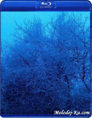 Виртуальное путешествие: Биэй, Фурано - Снежная Сказка / Virtual Trip: Biei, Furano - Snow Fantasy (2007) Blu-ray Disk + 720p