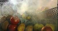 Среда обитания. Тот еще фрукт (2010) SATRip