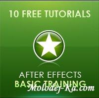After Effects Basic Training/ Andrew Kramer