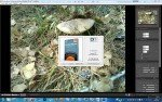 OnOne Perfect Photo Suite 5.5.1 (x32/x64) [Eng] + Ключ