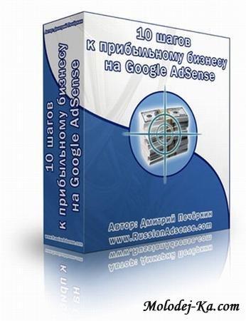10 шагов к прибыльному бизнесу на Google AdSense (2011 / DVDRip)