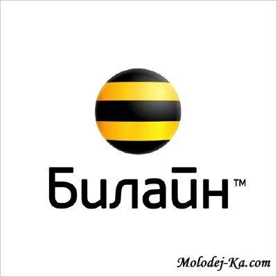 скачать База данных Билайн 2011 - Новинка!!! бесплатно