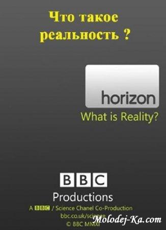 Что такое реальность? / What Is Reality? 2011 HDTVRip.