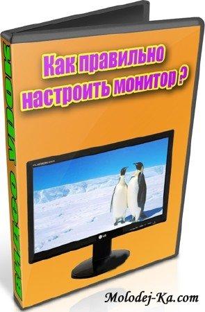 Как правильно настроить монитор (2012) DVDRip